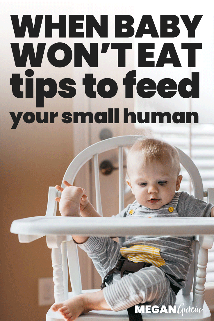 When Baby Won't Eat: Tips To Feed Your Small Human | Megan Garcia